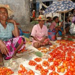 Pictures : on the Malagasy markets